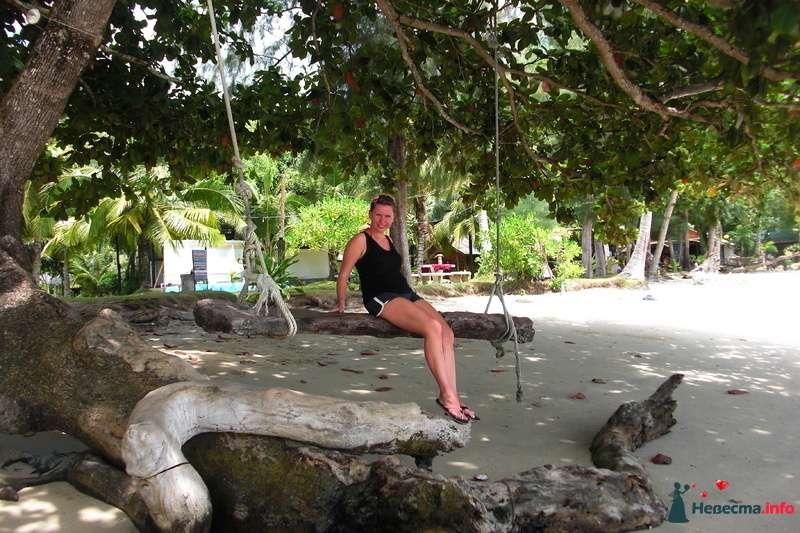 качели на пляже - фото 107024 Клёна