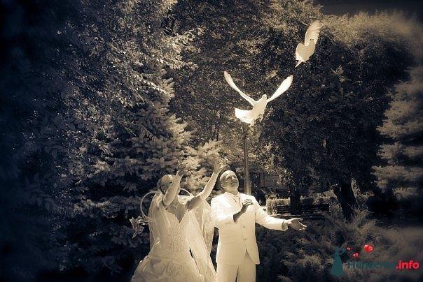Фото 106576 в коллекции свадебное фото - Ulkin