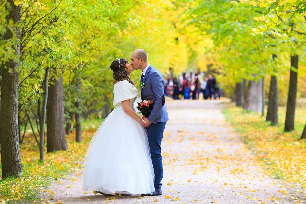 Свадебная прогулка в Екатерининском парке. Осенняя свадьба. - фото 3794809 Фотограф Петров Максим