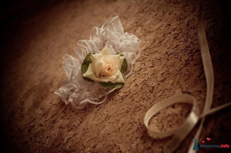 Фото 106866 в коллекции Свадебная фотография - Игорь Моисеев