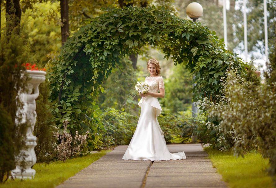 Фото 15292924 в коллекции Свадебное портфолио 2016 - Фотограф Елена Метёлкина