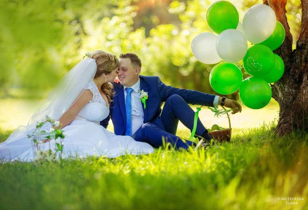 Фото 15293040 в коллекции Свадебное портфолио 2016 - Фотограф Елена Метёлкина