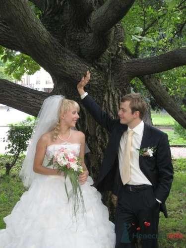 Виктор и Мария(Дерево любви) - фото 19197 Ведущий Сергей Можаровский