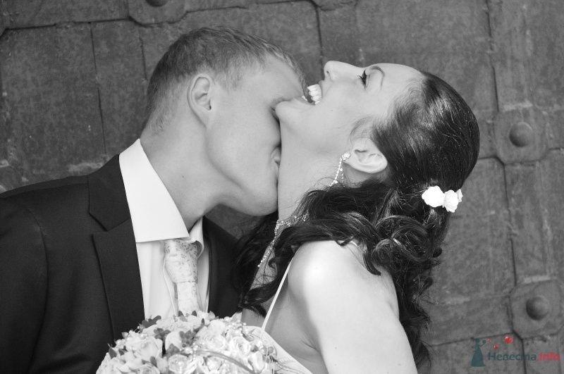 Фото 59032 в коллекции Наша свадьба !