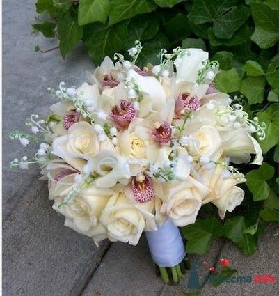 Фото 19922 в коллекции букеты с орхидеями - Теша