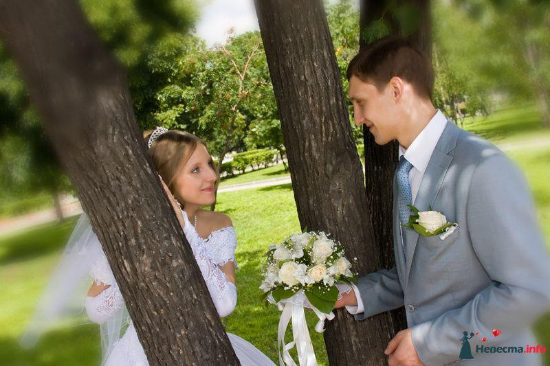 Фото 115610 в коллекции Свадебные фото - Фотограф Шумский Николай