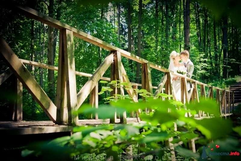 Фото 249679 в коллекции Wedding - Trofimovtv - видеосъемка