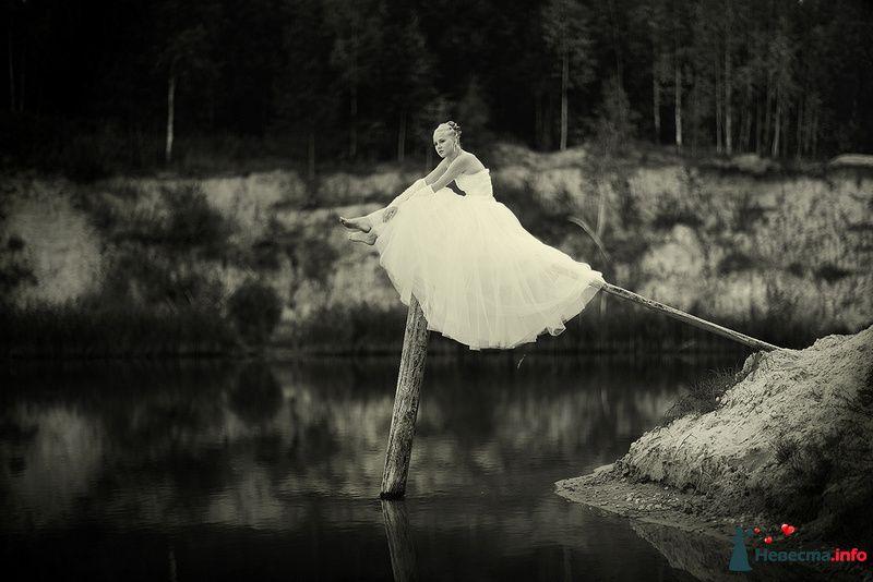 Фото 111730 в коллекции Мои фотографии - Юлдашев Тахир Ганиевич - фотограф