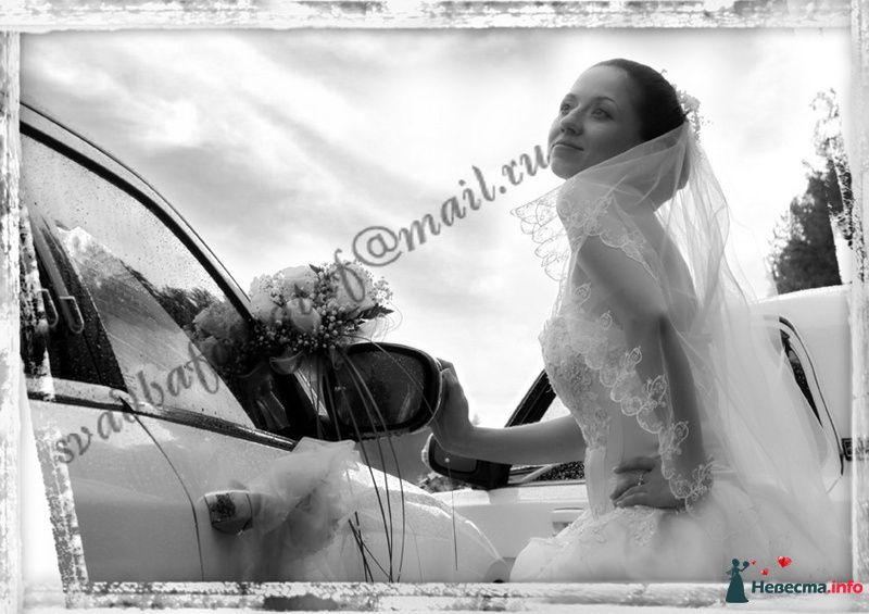 Фото 111031 в коллекции Свадебный Альбом