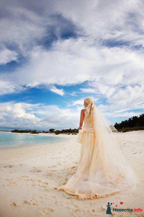 """Фото 111290 в коллекции Мои фотографии - Свадебное агентство """"Свадьба твоей мечты"""""""