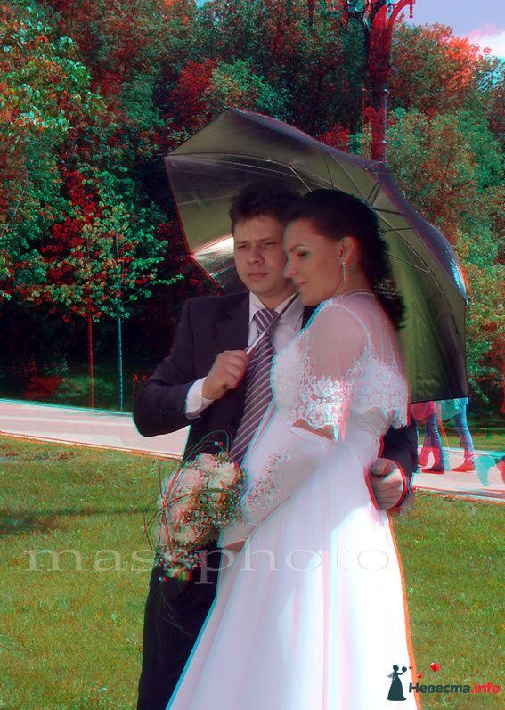 Фото 112953 в коллекции Мои фотографии - 3D Стерео - фотограф