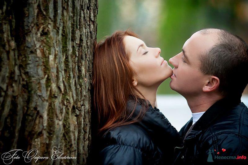 Оля и Коля 1:  Love Story - фото 112886 18051983