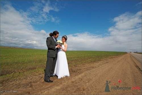Фото 9430 в коллекции Оля и Алексей - Свадебный фотограф Ерофей Петухов