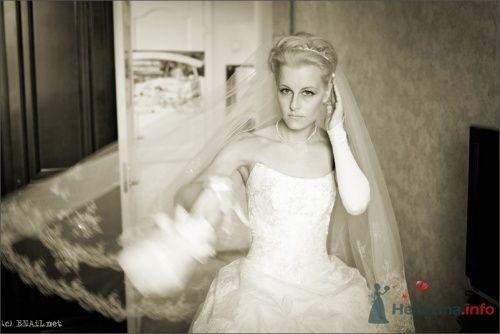 Фото 9460 в коллекции Саша и Катя - Свадебный фотограф Ерофей Петухов