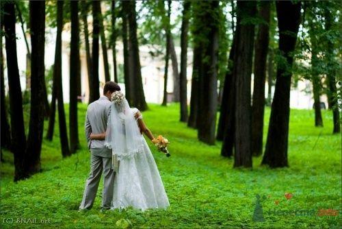 Фото 9492 в коллекции Оля и Володя - Свадебный фотограф Ерофей Петухов