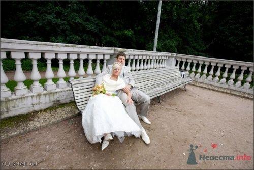 Фото 9494 в коллекции Оля и Володя - Свадебный фотограф Ерофей Петухов
