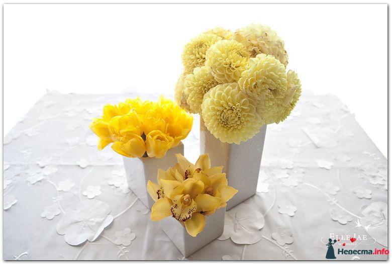 Кремовые астры, желтые тюльпаны и орхидеи цимбидиум в белых