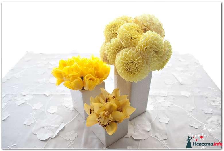 Кремовые астры, желтые тюльпаны и орхидеи цимбидиум в белых прямоугольных вазах. - фото 110416 Missy