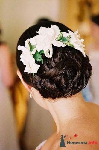Фото 13815 в коллекции Мои фотографии - Невеста01