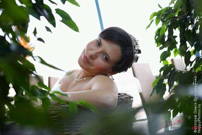 Фото 23688 в коллекции Мои фотографии - Arcangel