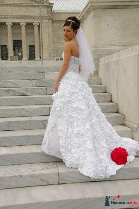 Фото 114262 в коллекции EdelWeissDress - EdelWeiss - wedding planning