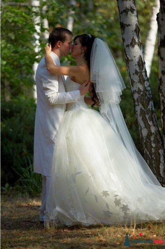 Фото 114280 в коллекции EdelWeissDress - EdelWeiss - wedding planning