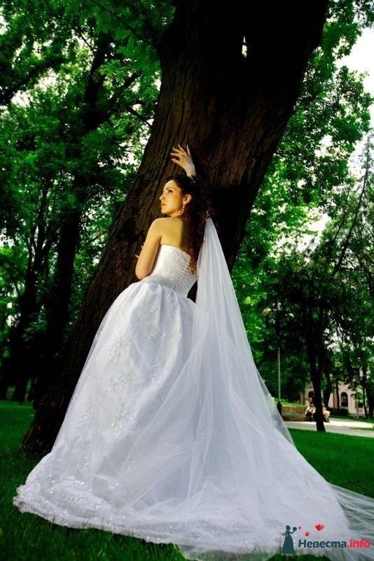 Фото 114300 в коллекции Высокая Мода Свадеб