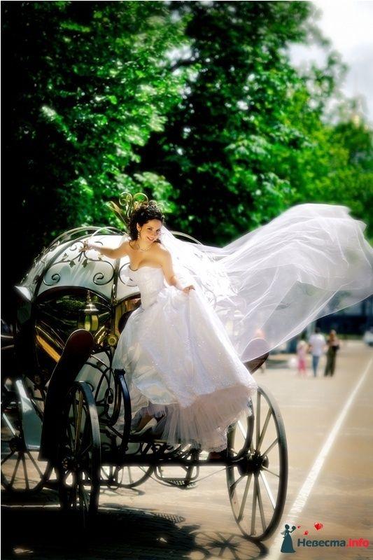 Фото 114356 - EdelWeiss - wedding planning