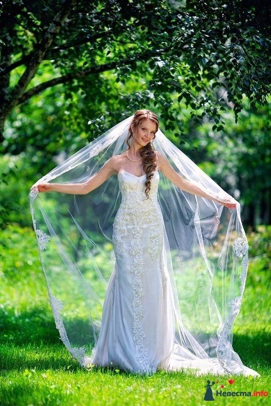 Фото 124873 в коллекции Высокая Мода Свадеб - Moon Light Agency - свадебное агентство
