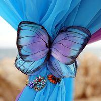 """Официальная выездная церемония """"Эффект бабочки"""" на Кипре"""