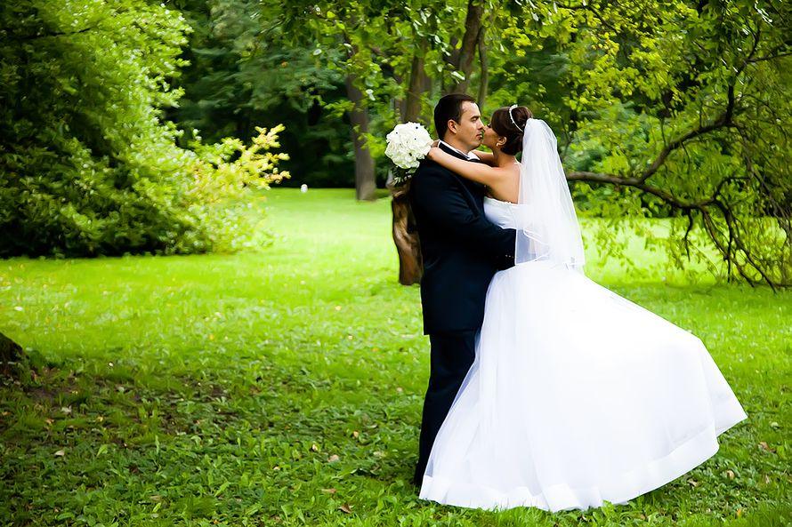 Фото 1342969 в коллекции Wedding - Свадебный фотограф Толстикова Кристина