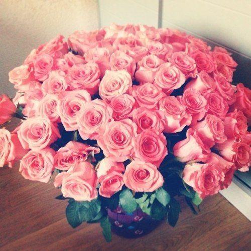 любительские фото цветов