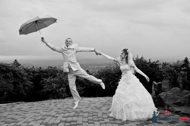 Фото 116317 в коллекции Свадебный альбом - Фотограф Комаров Дмитрий