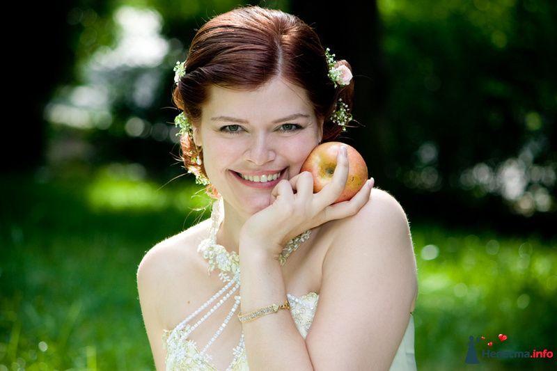 Фото 116395 в коллекции Свадебный альбом - Фотограф Комаров Дмитрий