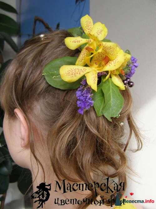 заколка в волосы - фото 121614 Мастерская цветочной феи - цветы