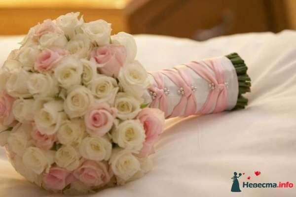 Фото 120772 в коллекции Все для свадьбы - Эгвейн