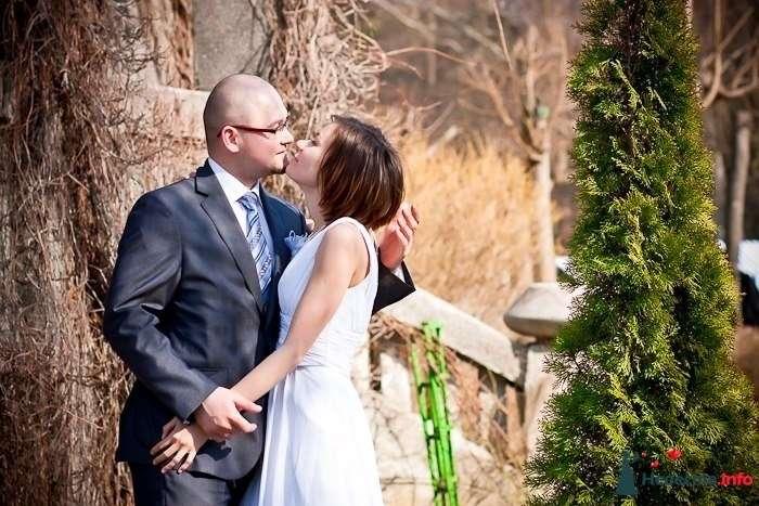 Свадебная фотосъёмка в Калининграде - фото 120386 Фотограф Татьяна Тельминова