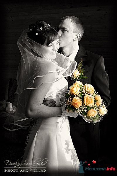Фото 119512 в коллекции Свадьба - Фотограф Дмитрий Сундряков