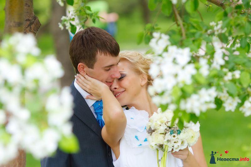 Фото 125799 в коллекции Wedding