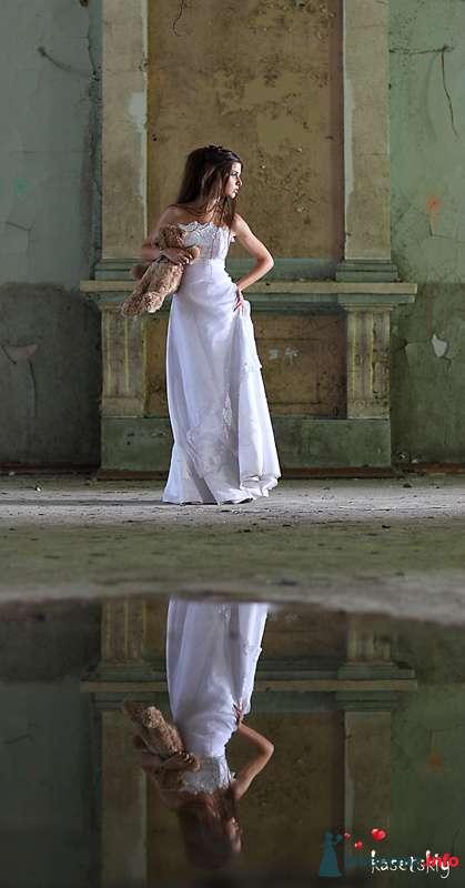 Фото 125808 в коллекции Wedding - Свадебный фотограф Денис Касецкий