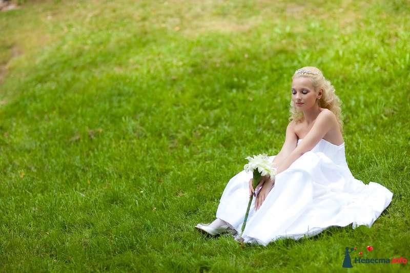 Фото 125827 в коллекции Wedding - Свадебный фотограф Денис Касецкий