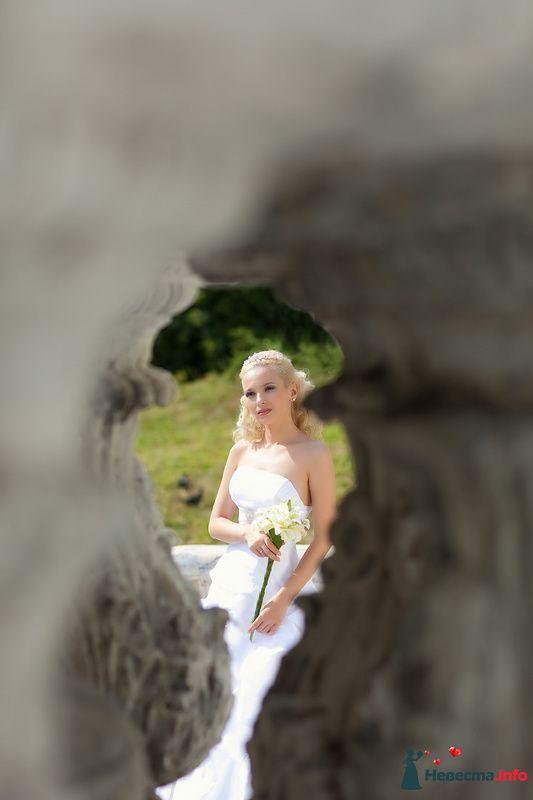 Фото 125828 в коллекции Wedding