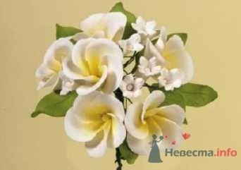 """Цветы из пастилы для украшения тортов - фото 10570 """"Бар-О-Белл"""" - кондитерские изделия"""