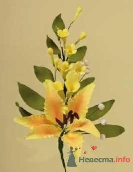 """Цветы из пастилы для украшения тортов - фото 10573 """"Бар-О-Белл"""" - кондитерские изделия"""