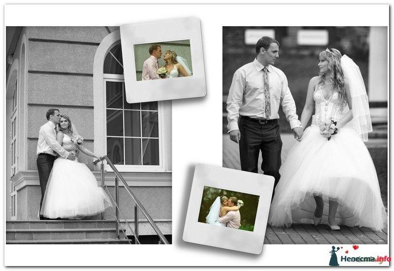 Женя и Алексей - фото 122566 Алекс Дубровский