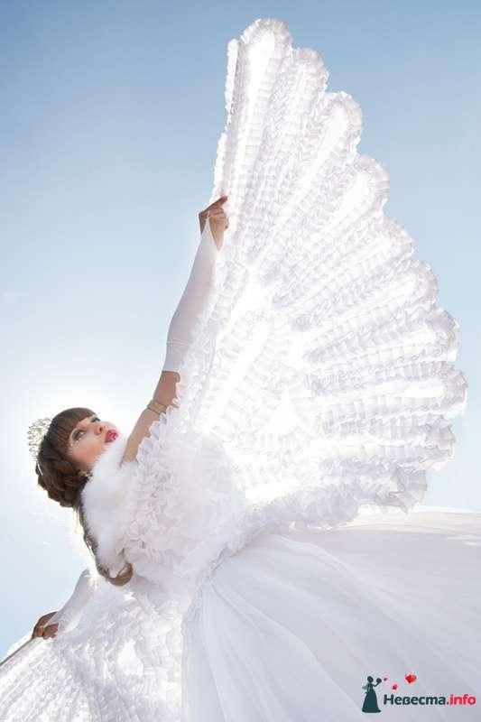 Красота в кадре - фото 122713 Профессиональный свадебный фотограф Елена Вольф (Барнаул)