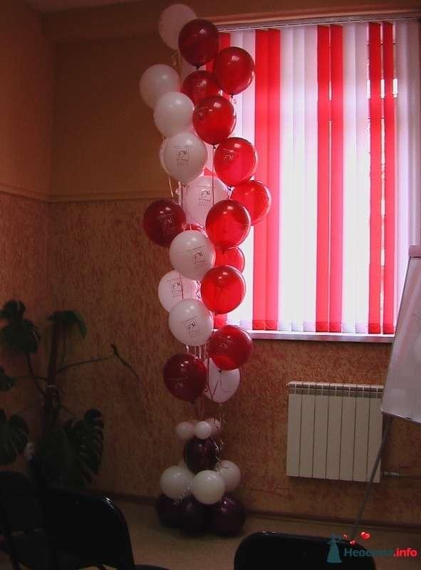 """Фото 123687 в коллекции Оформление  воздушными шарами - Агентство """"Баттерфляй"""" оформление"""