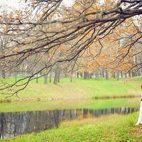 Свадебная фотосъёмка осенью