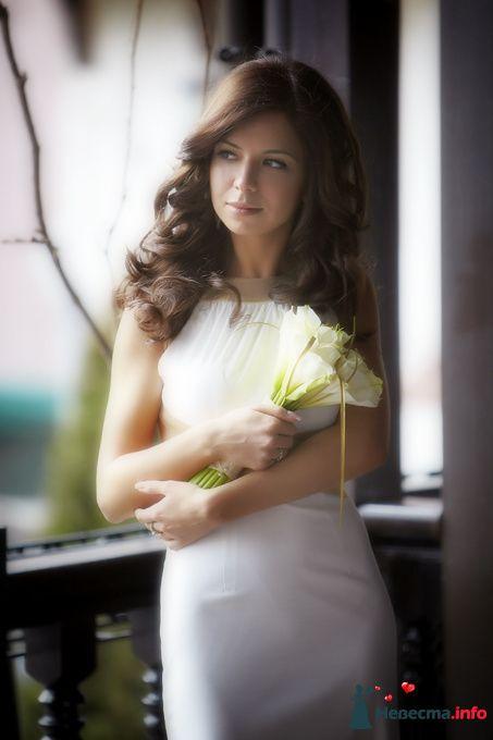 Фото 124124 в коллекции Мои фотографии - Studio-Wedding - фотограф