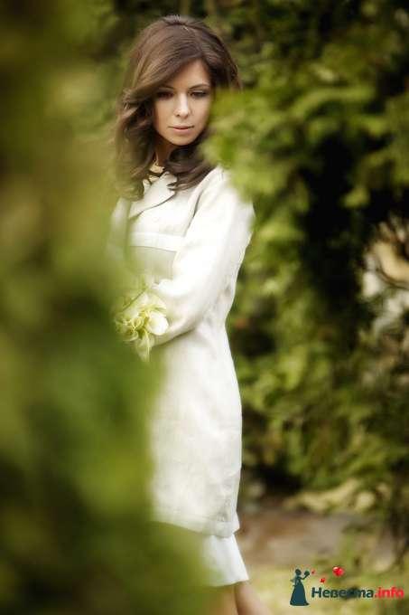 Фото 127808 в коллекции Мои фотографии - Studio-Wedding - фотограф